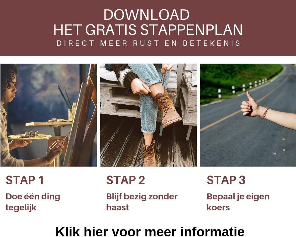 gratis stappenplan